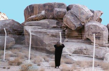 pedras encontradas na Arábia com figuras de touros egípcios
